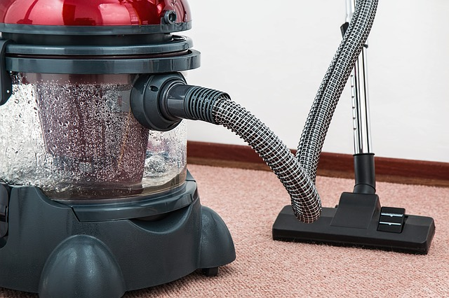 Upright vs. Canister Vacuums